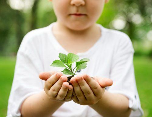 I Semana do Meio Ambiente 2021 no FAC